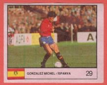 Spain Michel Real Madrid 29